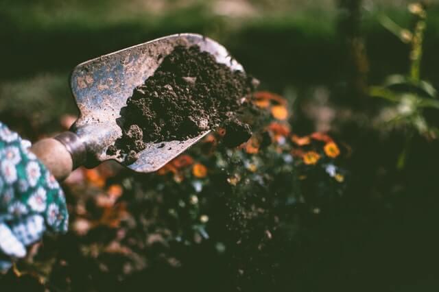 Compost strooien voor het egaliseren van het gazon